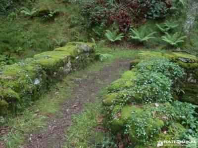 Valles Pasiegos;bosque encantado asturias parque nacional monfragüe monasterio de nuria rutas gorbe